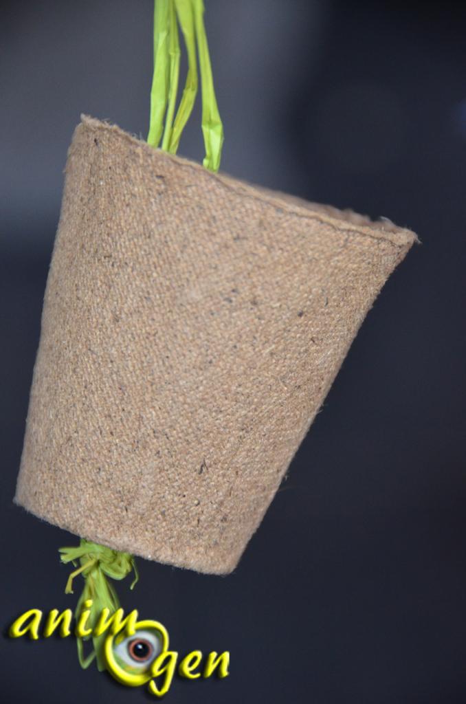 jouet pour perroquet fabriquer soi m me pots de carottes radis salades et fleurs animogen. Black Bedroom Furniture Sets. Home Design Ideas