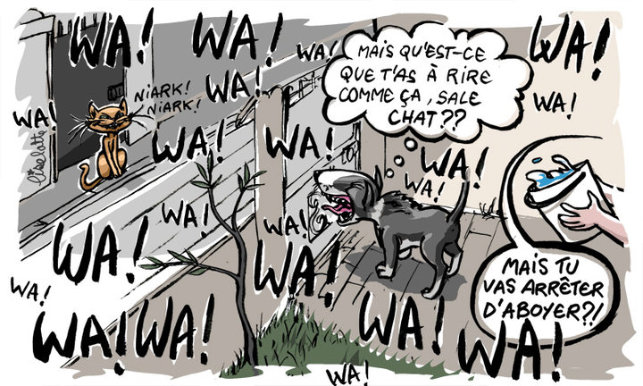 Comportement : comment dissuader un chien d'aboyer ?