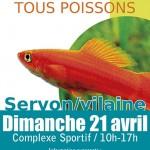 Bourse aux poissons et coraux à Servon sur Vilaine (35), le dimanche 21 avril 2013