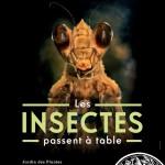 """Exposition """" Les Insectes Passent à Table """" à Paris (), du mercredi 17 avril au 1 er octobre 2013"""