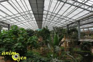 Visite de la serre zoologique Biotropica à Val de Reuil dans l'eure