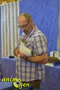AnimOgen vous emmène au Salon du chiot 2013, à Saint Raphaël