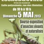 2 ème Salon d'Entomologie à Escaudoeuvres (59), dimanche 05 mai 2013