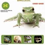 Bourse aux reptiles à Bailleul (59), dimanche 21 avril 2013