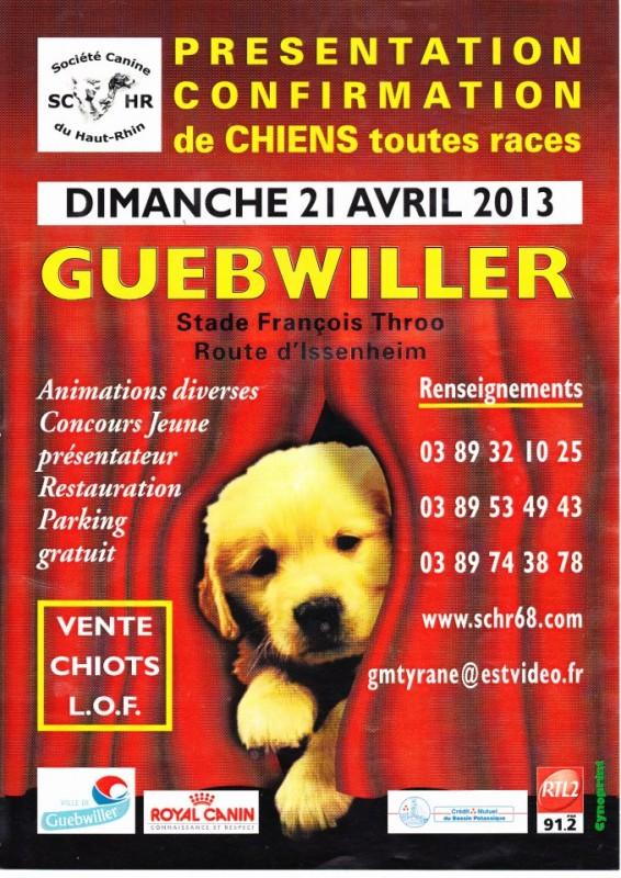 Présentation-Confirmation de chiens toutes races à Guebwiller, dimanche 21 avril 2013