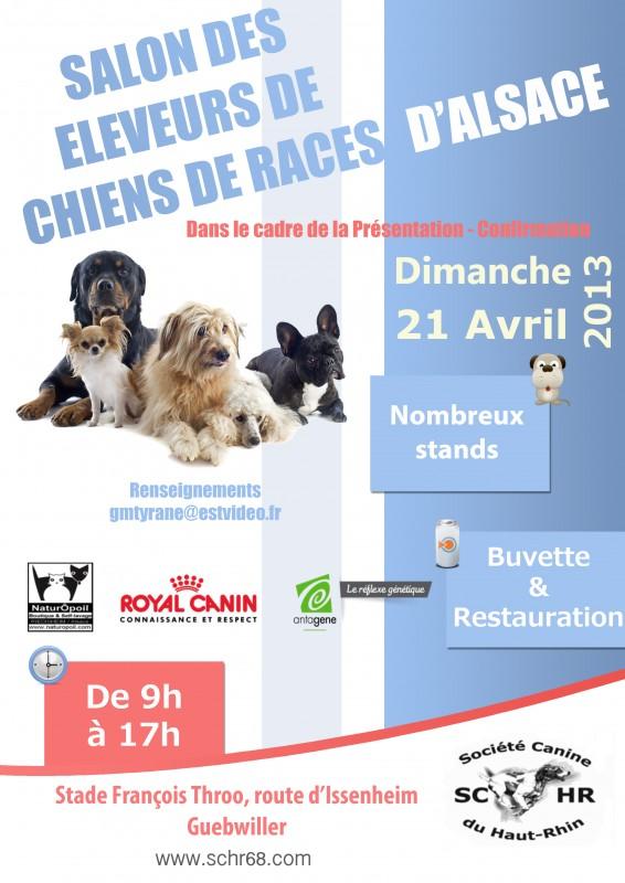 Pr sentation confirmation de chiens toutes races et salon for Salon des chiens