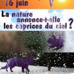 La nature annonce-t-elle les caprices du ciel ?