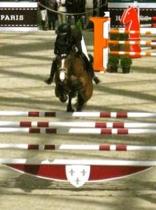 Saut Hermès : les meilleurs cavaliers de jumping sous la verrière du Grand Palais à Paris