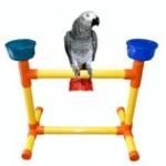 Accessoire : les perchoirs de table pour perroquet (type,choix, avantages et inconvénients)