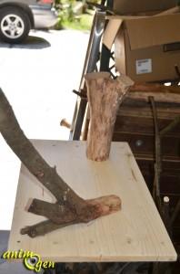 aire-jeu-jouet-perroquet-papillote-foraging-fabriquer-idée-fabrication-psittacidé-oiseau-animal-animaux-compagnie-animogen-2