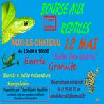 Bourse aux reptiles, le 12 mai 2013, à Auxi le Château