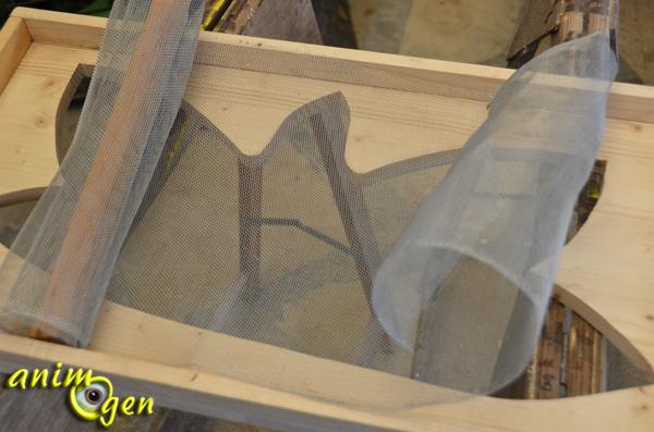Fabriquer Un Aquarium En Bois - Accessoire pour rongeurs comment fabriquer une cageà partir d u2019un aquarium ? animOgen