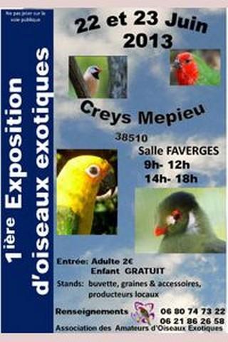 expo bourse aux oiseaux exotiques, à Creys Mépieu, les 22 et 23 juin 2013
