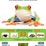 exposition bourse aux reptiles à Arras, reptilexpo, le dimanche 23 juin 2013