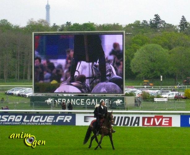 Equitation : Mario Luraschi fait son spectacle à Longchamp