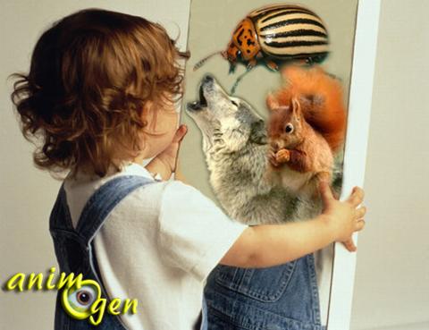 La perception des animaux sauvages et domestiques par les enfants