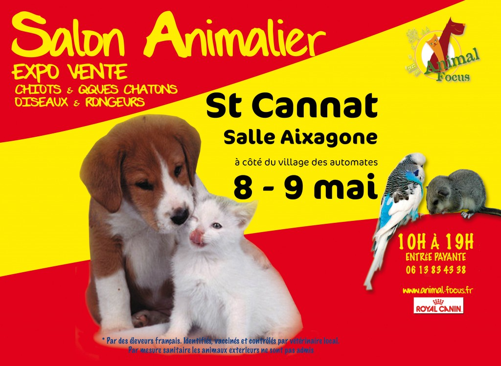 Salon animal focus saint cannat 13 mercredi 08 et for Salon du chien et chat