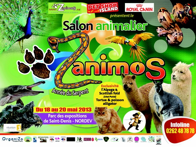 Salon animalier zanimos saint denis r union du for Salon du chien et chat