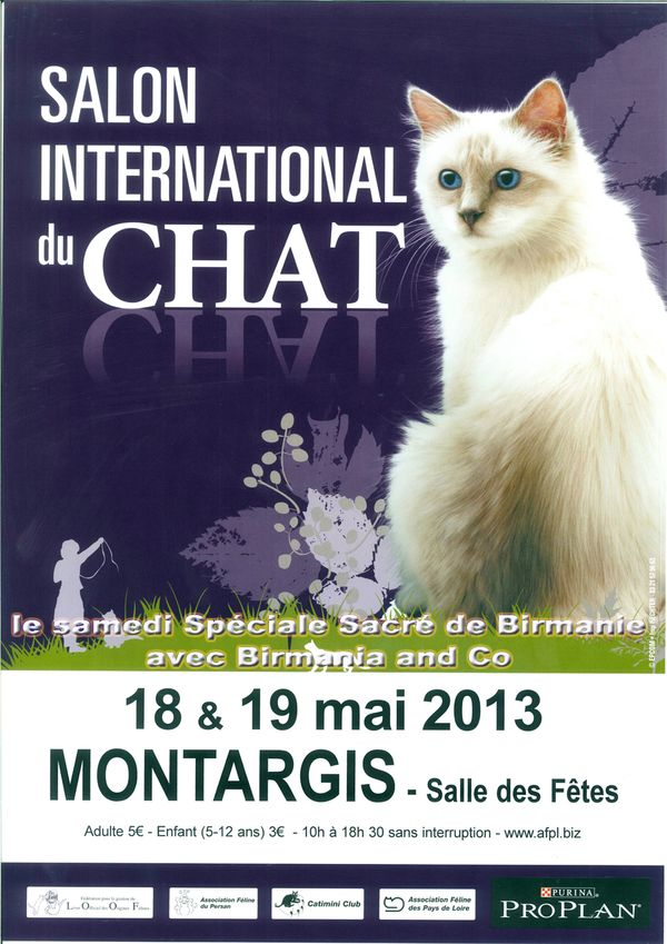 salon international du chat montargis 45 samedi 18 et dimanche 19 mai 2013 animogen. Black Bedroom Furniture Sets. Home Design Ideas