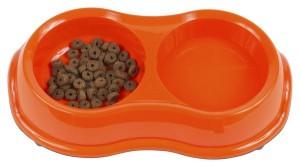 Alimentation : les causes de refus de nourriture chez le chat