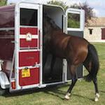 Embarquer son cheval dans un van
