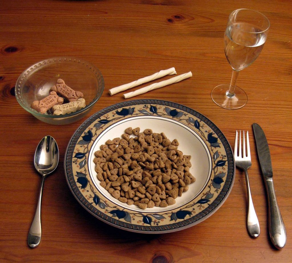 Alimentation et santé : les compléments alimentaires pour chiens (rôle, utilité et risques)