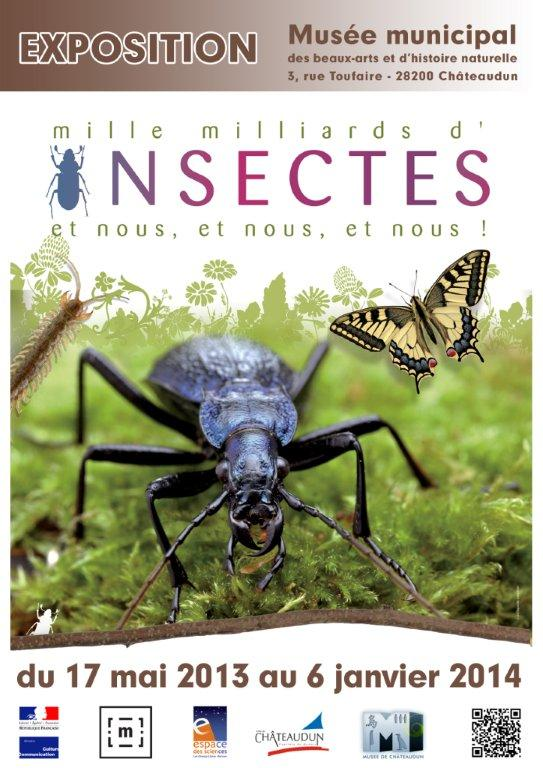 musee insecte vaucluse