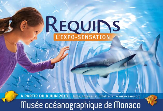 """Le Musée Océanographique de Monaco présente l'exposition """"Requins"""", du 08 juin 2013 jusqu'en 2015"""