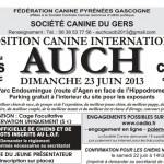 Exposition Canine Internationale à Auch (32), dimanche 23 juin 2013