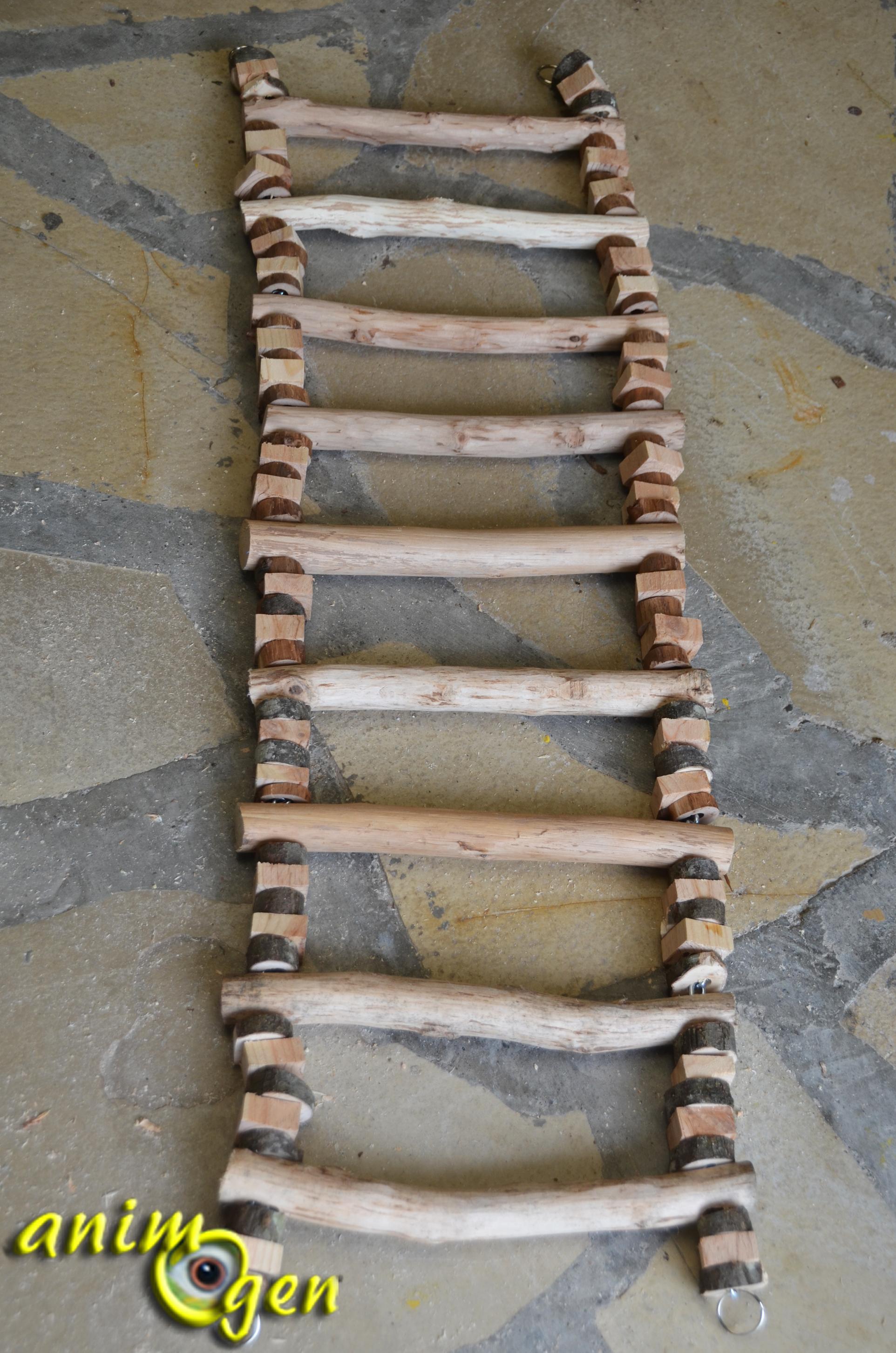 Accessoire fabriquer pour nos perroquets chelle en - Fabriquer une echelle en bois ...