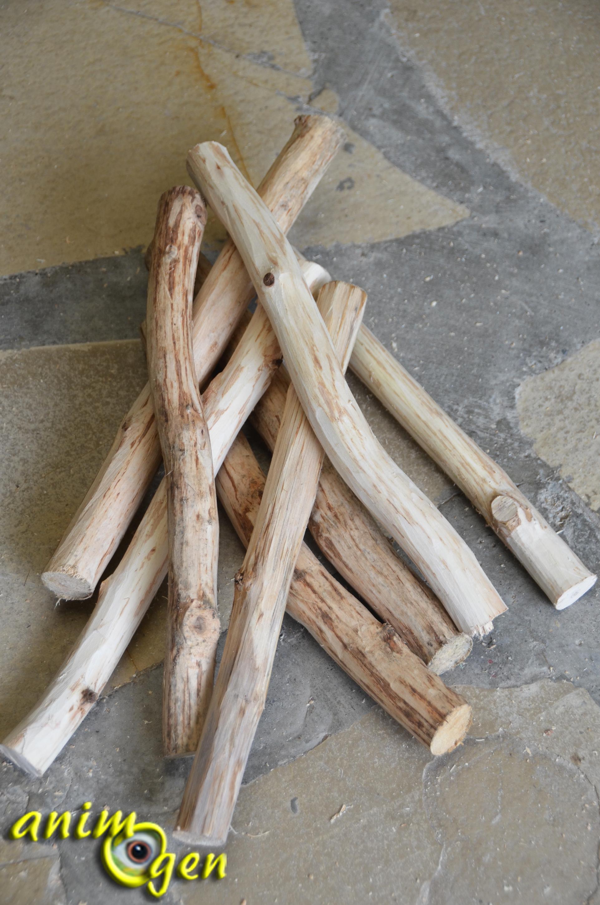 accessoire fabriquer pour nos perroquets chelle en bois et montants m talliques animogen. Black Bedroom Furniture Sets. Home Design Ideas