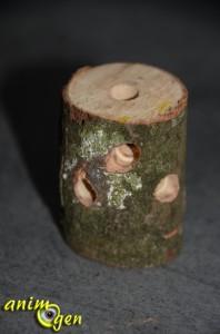Jouet de foraging à fabriquer soi-même : totem pour rongeurs et perroquets
