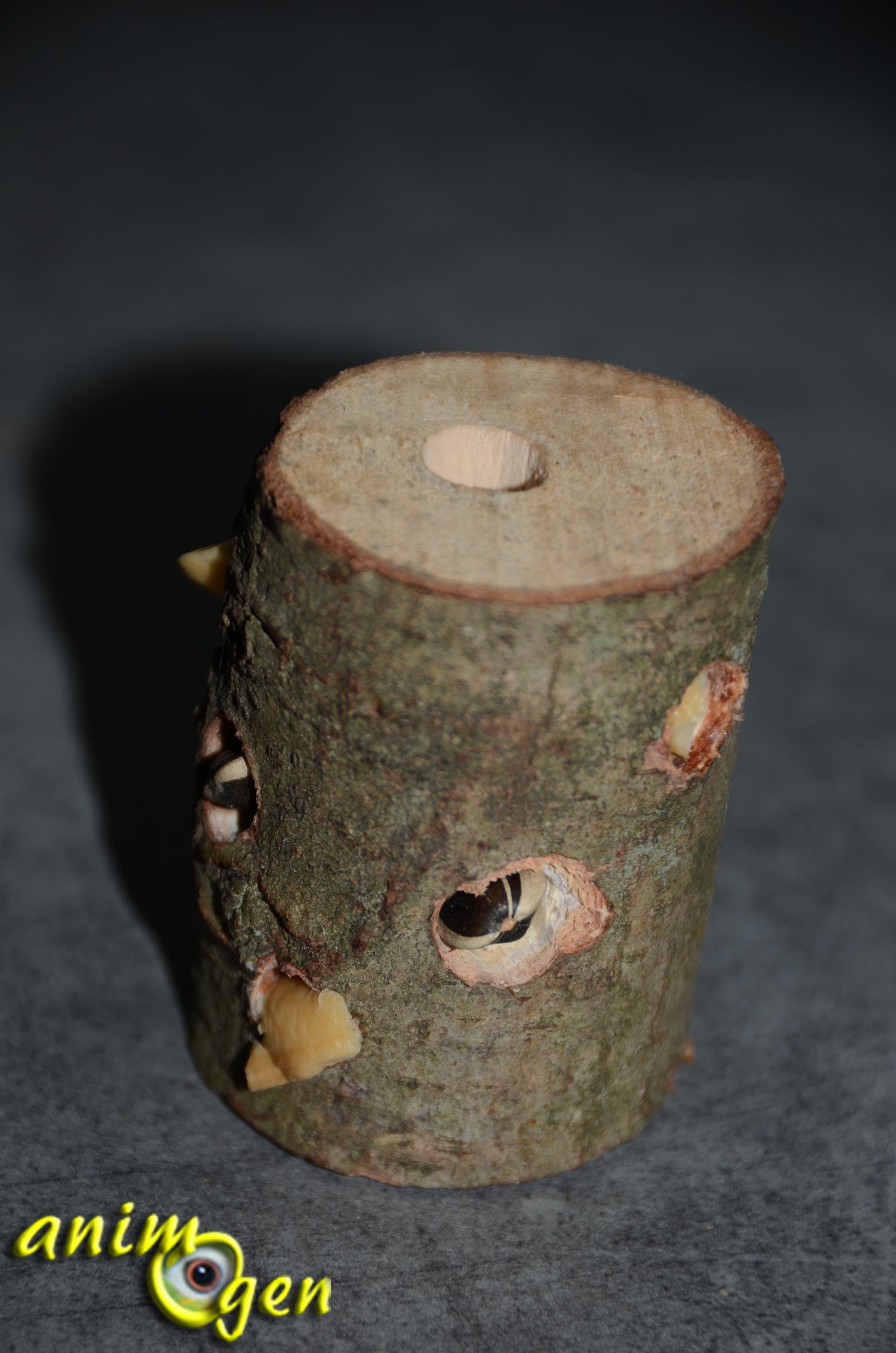 Jouet de foraging fabriquer soi m me totem pour rongeurs lapins et perro - Fabriquer un escabeau en bois ...