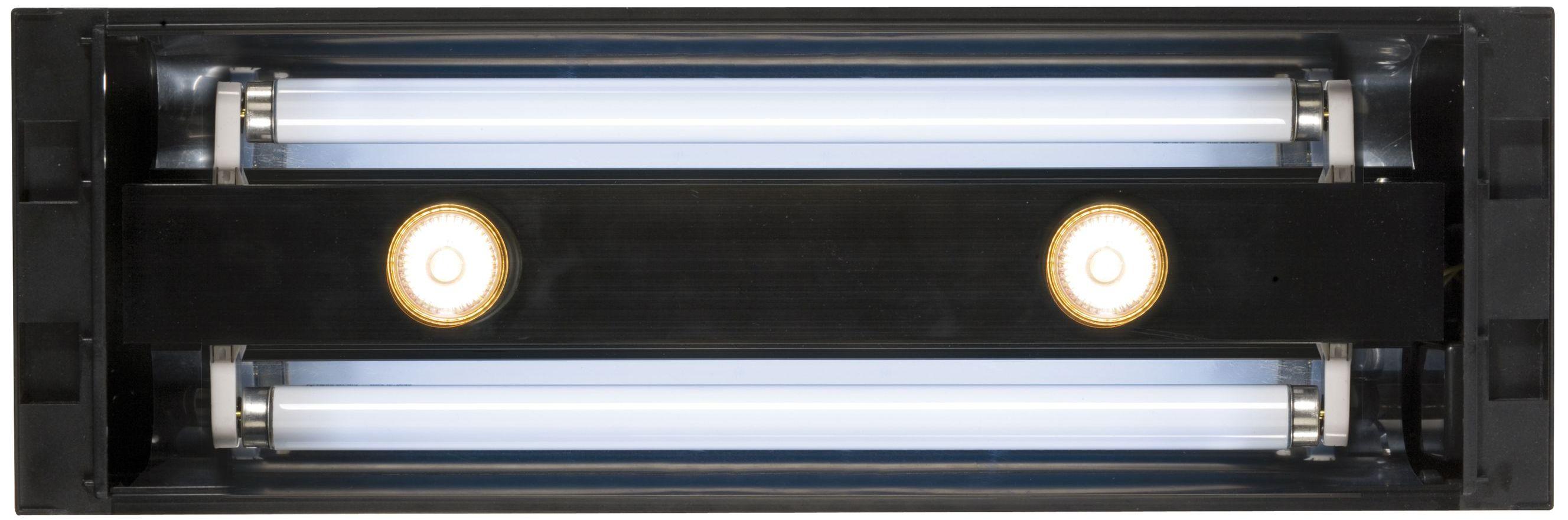 eclairage pour terrarium