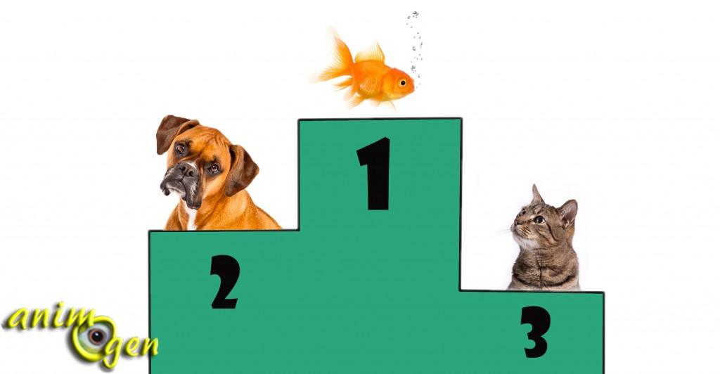 Quelle proportion les animaux de compagnie représentent-ils en France ?
