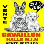 4 ème Salon des Animaux de Compagnie Animaliades à Cavaillon (84), samedi 29 et dimanche 30 juin 2013