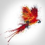 Le perroquet : origines d'une passion et symbolique