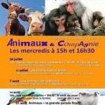 Animaux & CompAgnie à Châteauroux (36), les mercredis 24 et 31 juillet, 7, 14 et 21 août 2013