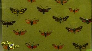 """""""Les insectes passent à table"""", ou l'esprit de famille"""