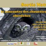 Sortie découverte, « A la rencontre des chouettes chevêches », à Sausheim (68), vendredi 26 juillet 2013