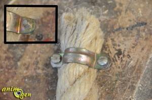 Accessoire pour perroquets : comment fabriquer et suspendre un perchoir en corde fait maison ?