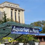 Parc animalier aquatique : l'Aquarium du Trocadéro