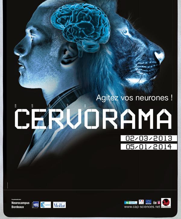 Exposition « Cervorama, Agitez vos neurones », à Bordeaux (33), du 02 mars 2013 au 05 janvier 2014