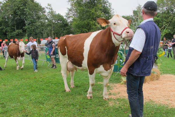 8 ème Fête de l'élevage à Morvillars (90), le dimanche 01 er août 2013