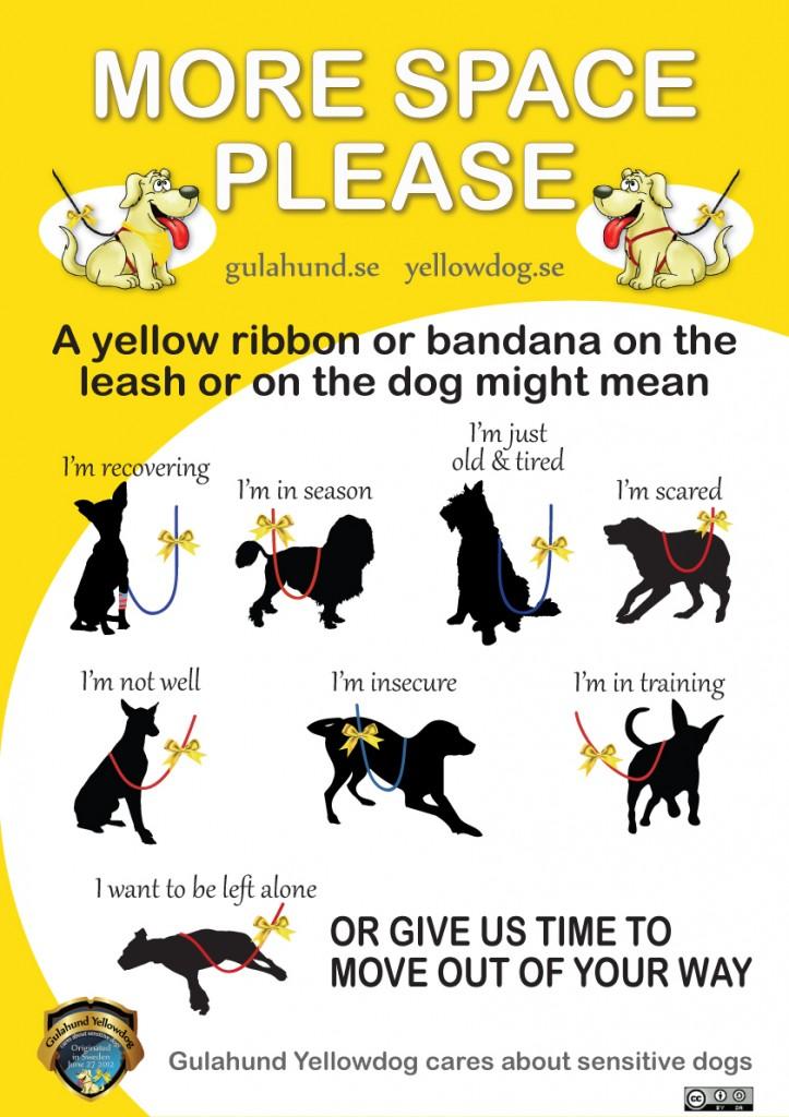 Le ruban jaune chez les chiens, un accessoire incontournable pour la sécurité de tous