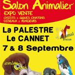 Salon Animal Focus au Cannet (06), le samedi 07 et le dimanche 08 septembre 2013