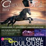 """Salon du Cheval """"Cheval Roi"""" à Toulouse (31), du 30 août au 1 er septembre 2013"""