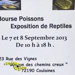 Bourse aux Poissons et Exposition de Reptiles à Coulaines (72), du samedi 07 au dimanche 08 septembre 2013