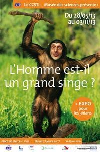 Exposition «L'Homme est-il un grand singe ?» à Laval, du mardi 28 mai au dimanche 03 novembre 2013
