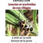 Exposition « Insectes et arachnides de nos villages » à Monaccia d'Aullène (Corse), du lundi 05 au samedi 24 août 2013